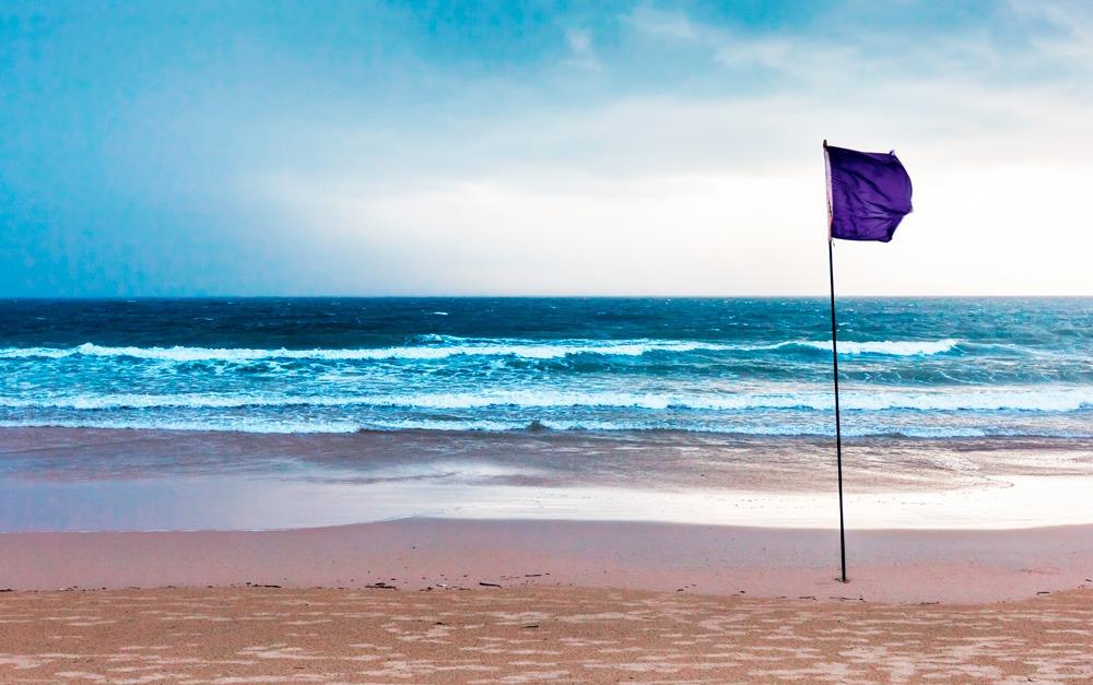 Bandeira lilas, atenção! Passe Safe Sea®